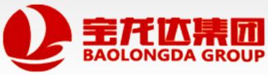 山东宝龙达实业集团